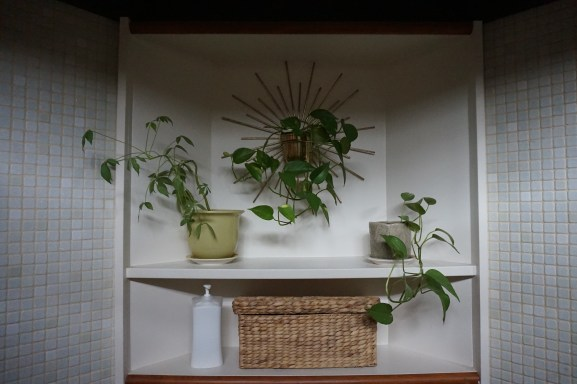 Shelf behind the toilet. Perfect spot for plants with a basket for storage
