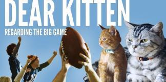 Friskies BuzzFeed Kitten Campaign