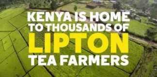 Lipton Partners with WE to Support and Empower Female Tea Farmers
