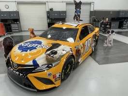 Mars Petcare and the Pedigree Foundation partners with Kyle Busch