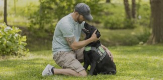 Purina Dog Chow highlights life-changing benefits service dogs provides