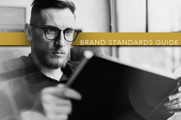 Man looking at brand book. Brand Standard Guide.