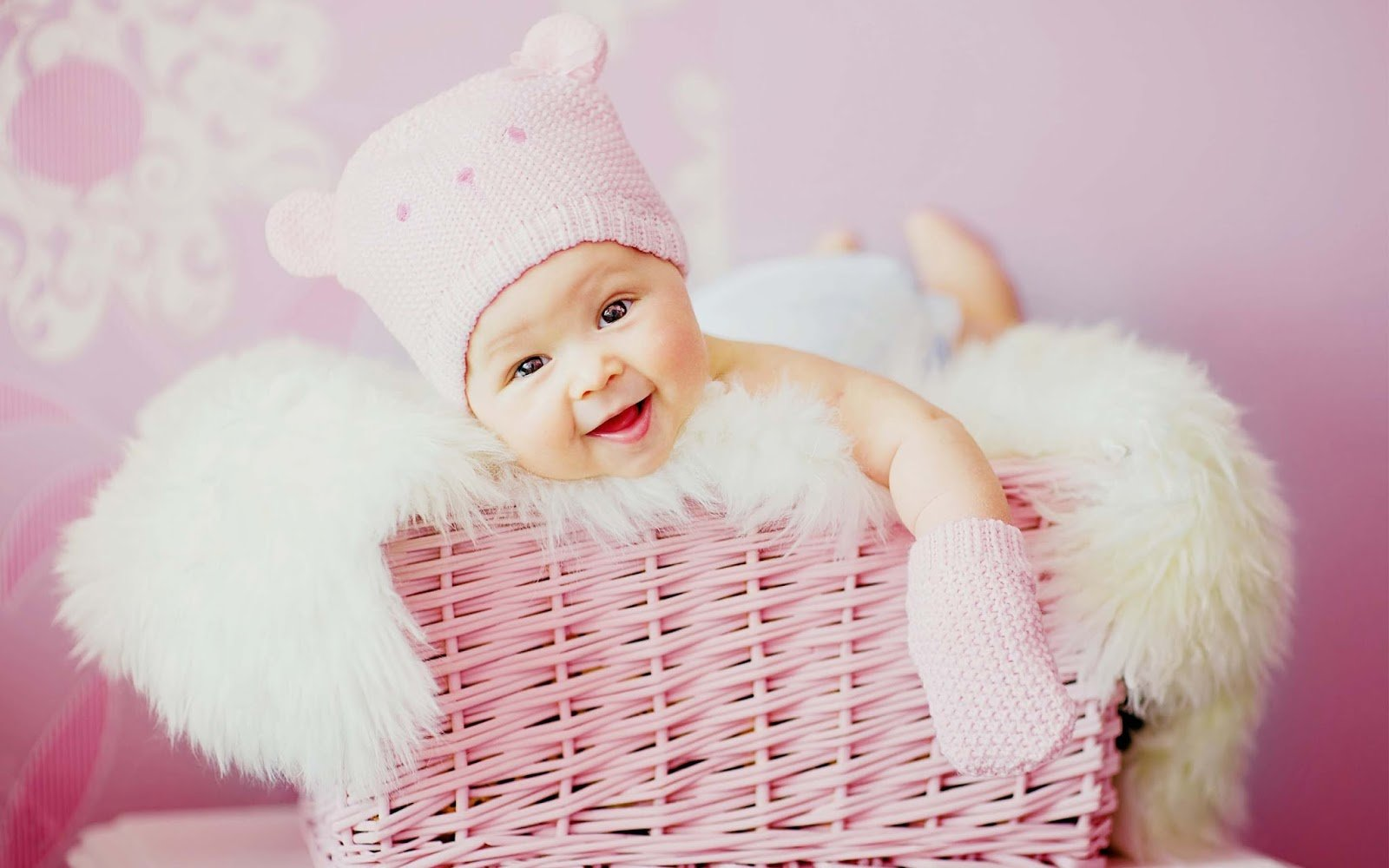 Baby Stuff for Sale   Baby Products Online Shopping