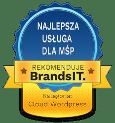 Ranking serwerów wirtualnych pod Wordpress dla MŚP nazwa