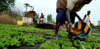 Over 100 Million Rural People Reached As IFAD's Fight Against Hunger, Poverty-Brand Spur Nigeria