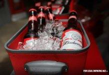 World's biggest brewer AB InBev scraps dividend despite growth in revenue in Q3