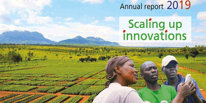 Scaling Up Innovations Brandspurng IITA's Commitment To African Agricultural Transformation