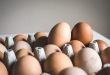 5 Steps To Take In Starting An Egg Distribution Business Brandspurng