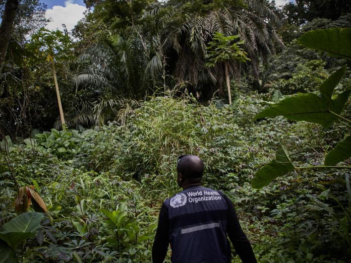 Ebola Resurfaces in North Kivu in the Democratic Republic of the Congo Brandspurng