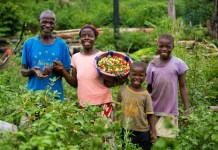 Youth Involvement In Agric Sector Crucial To Food Security – Expert-Brand Spur Nigeria