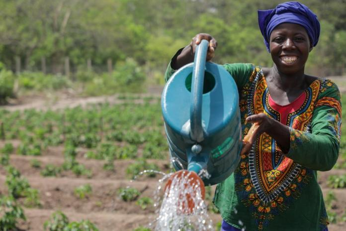 IFAD And Guinea To Help Rural Populations Recover From COVID-19 Effects-Brand Spur Nigeria