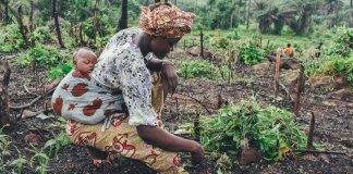 Gender: A woman subsistence farmer in Sierra Leone. Photo by Annie Spratt/Brand Spur Nigeria