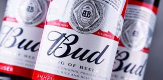 Budweiser Buys Beer.eth Domain Name For 30 ETH, Rocket NFT For 8 ETH-Brand Spur Nigeria