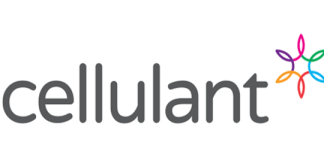 Pan African Payments Company Cellulant Acquires PSP License In Ghana-Brand Spur Nigeria