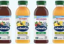 Full Sail IP Partners Acquires Odwalla From The Coca-Cola Company-Brand Spur Nigeria