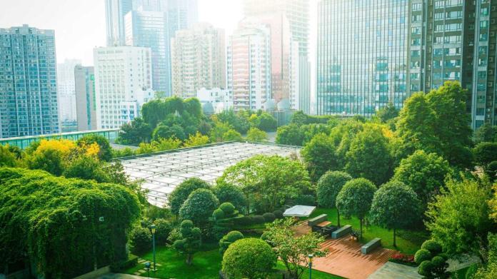 BAT Unveils Sustainable Investment In Environment-Brand Spur Nigeria