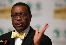 Food security Dr Akinwumi Adesina Assures Nigeria of Bank's Strong Support To Achieve Food Security Brandspur