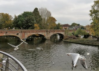 River Avon bridge