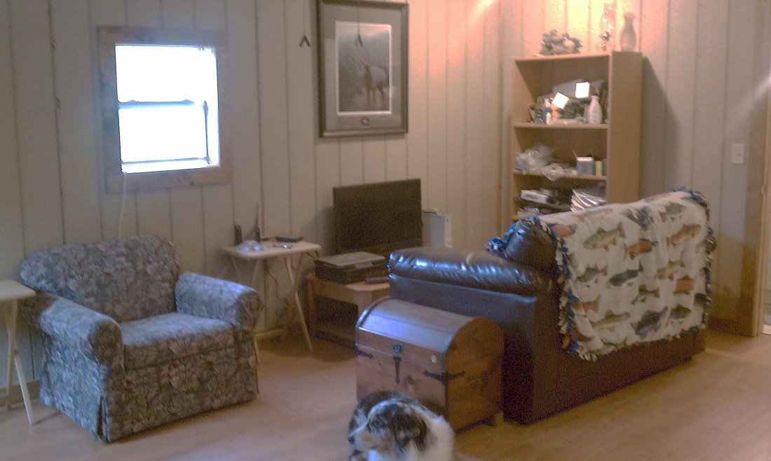 shedteau livingroom