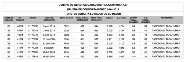 SUBASTA LMDLM 2015 2.numbers (1)