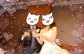 ブランセルご結婚祝