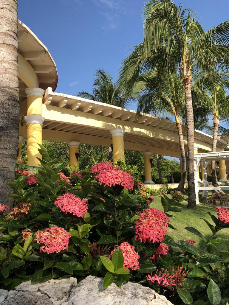 IMG 4135 - Iberostar Grand Paraiso Playa Del Carmen Review