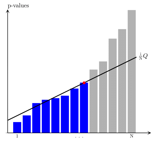 The individual p-values for each hypothesis testing are arranged in order starting from the smallest one and compared to their false-rate-corrected values calculated as ${i \over N}Q$ (here, $Q=0.10$). The largest p-value that is smaller than the corresponding false-rate-corrected value is significant as well as all hypothesis having smaller p-values (regardless of whether they are larger than the corresponding false rate corrected values).