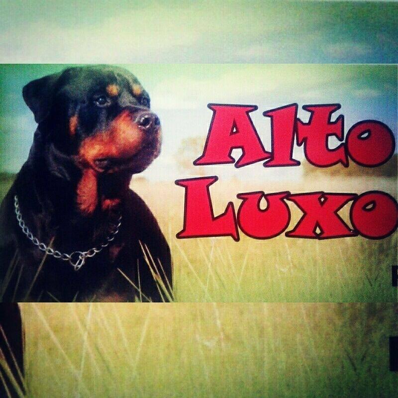 Alto Luxo