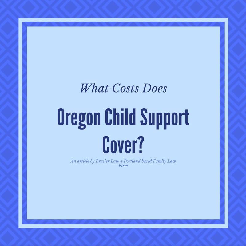 What Exactly Does Oregon Child Support Cover  Brasier Law
