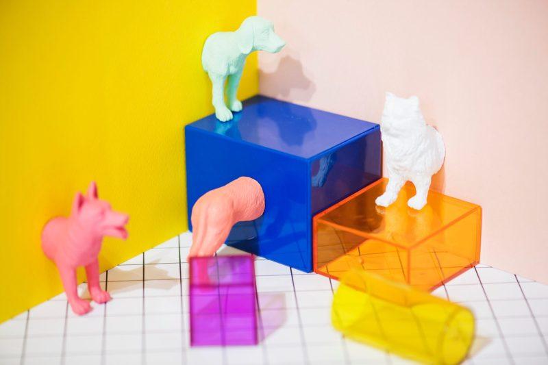 kids - cubos e animais - ingles para crianças - ingles online