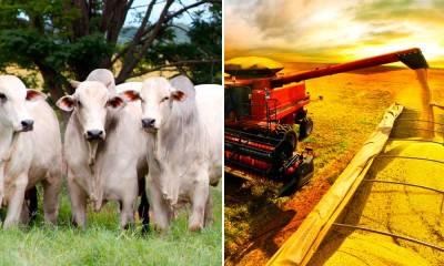 Governo anuncia R$ 190,25 bilhões para Plano Agrícola e Pecuário 2017/2018