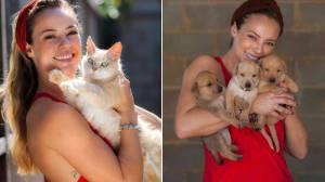 Me adota! Atriz Paolla Oliveira faz campanha para adoção de animais