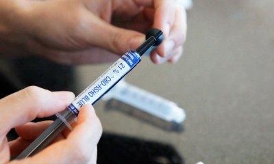 OMS divulga recomendação para não catalogar canabidiol como droga