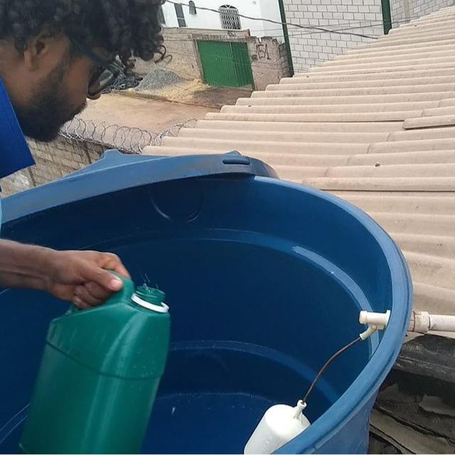 Dedetização de insetos em Betim