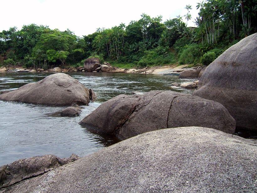 Turismo en Brasil: Manaos (Amazonas)