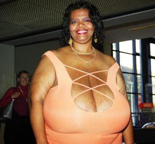 Norma Stitz Bra Size