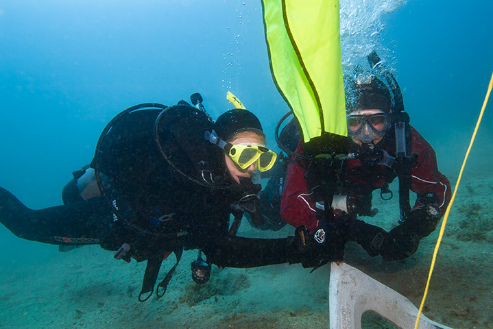 Search and Recovery (Photo Credit - PADI)