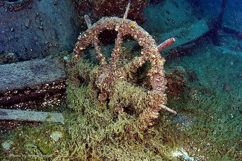 Multilevel Diver (Photo Credit - Blanchard)