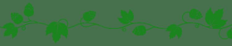 Banière lianne de houblon fine