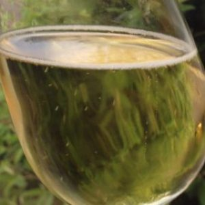 hydromel pétillant hydromel super limpide transparent délicieux dégustation hydromels artisanal au miel d'Alsace par la Brasserie du Vallon