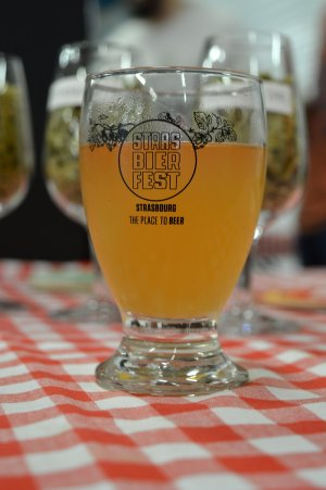 """Ma """"Vin-Dieu"""", ma toute première bière sauvage ! Un grand succès, acide, au vin nouveau, immortalisé par TopBeer lors du StrasBier Fest 2018"""