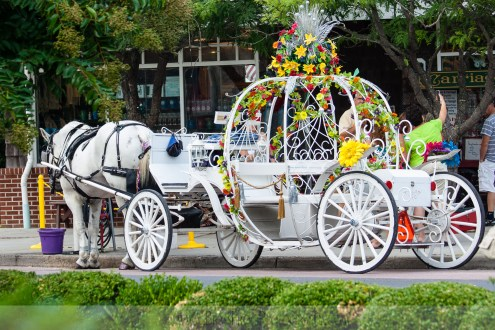 Carriage in Cape May NJ