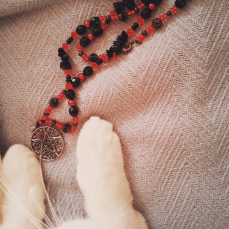My cat plays with a necklace given to me by a friend. #domagick #developingyoureye