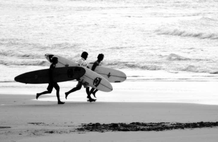 SURFwww.flickr.com:photos:monkeyc: