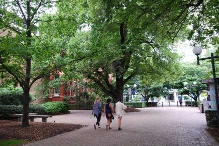 Saiba como buscar uma boa Universidade na Austrália  |  BRaustralia.com