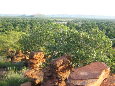 Kununurra_from_lookout