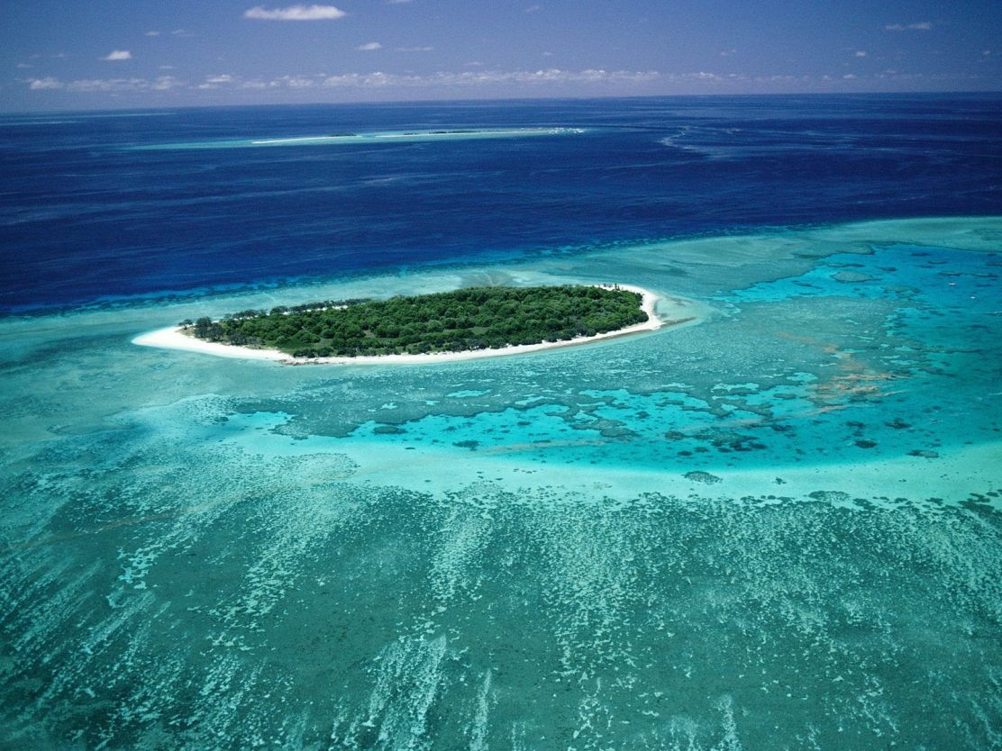 Lady_Musgrave_Island_Great_Barrier_Reef