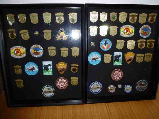 junior ranger badges