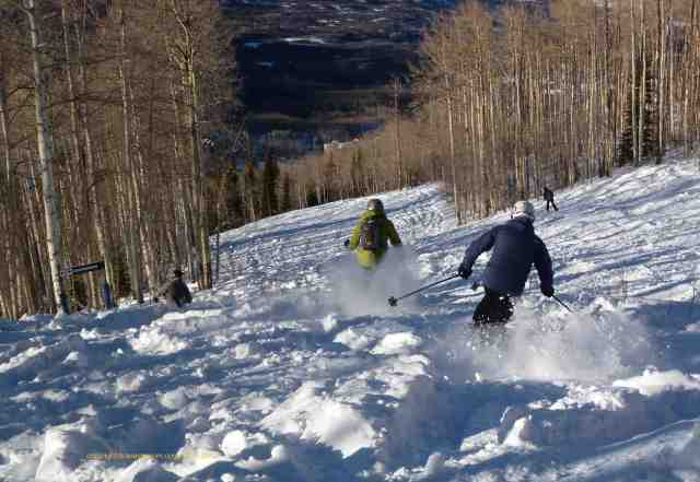 powderhorn colorado ski buddies powder
