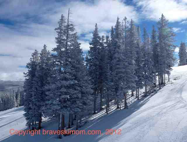 aspen mountain trees colorado